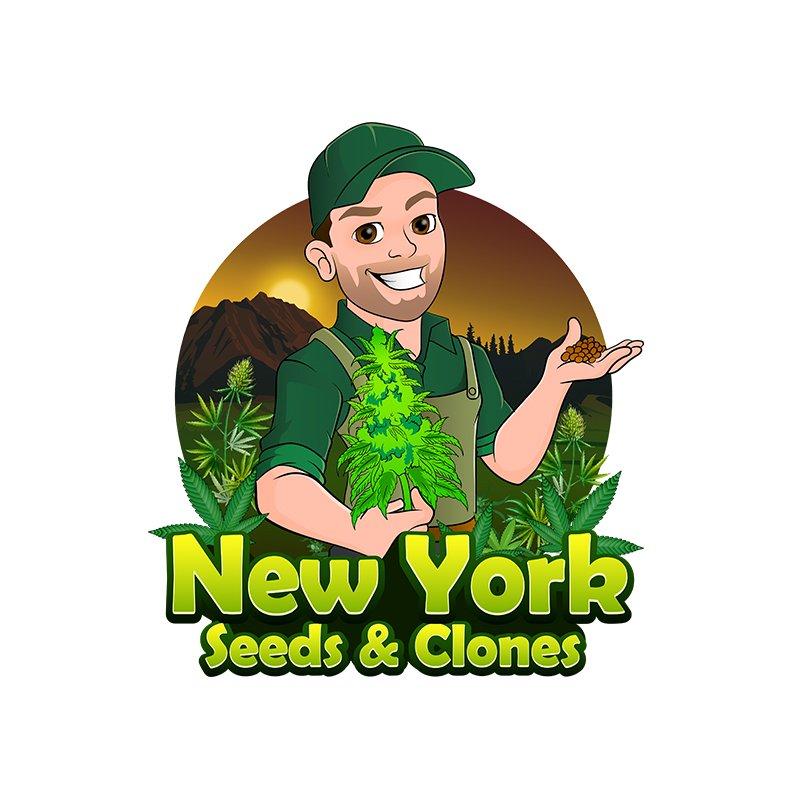 marijuana clones new york client